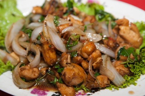 Stir fried chicken with onions