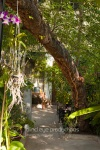 Botanico gastropub setting